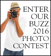 Buzz Photo Contest Entry