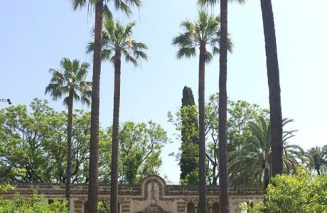 Alcazar of Seville. (Photo: Dorothy Nugent)