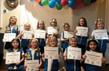 Daisy Troop 126125