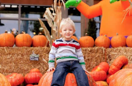 Pumpkin Patch to Benefit Epilepsy Foundation Texas