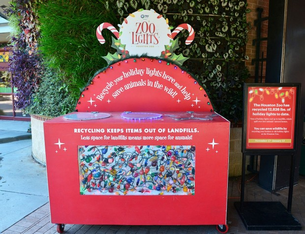 Christmas light recycling at Houston Zoo